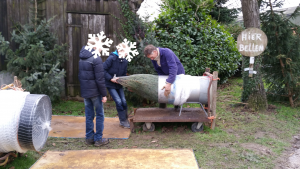 kerstboom te koop - www.hobbyveld.nl