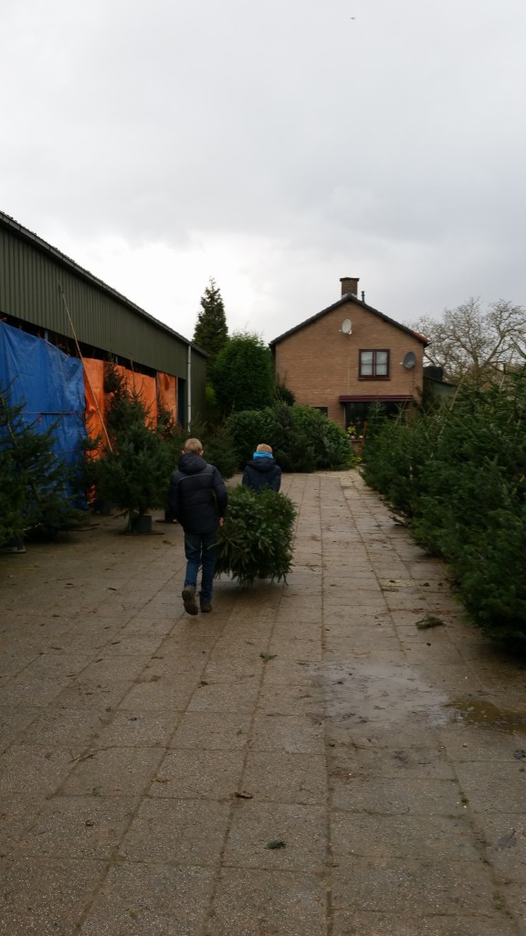kerstboom-te-koop-www-hobbyveld-4