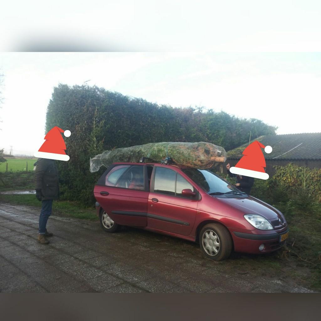 kerstbomen-zelf-omhakken-mogelijk-www-hobbyveld-2