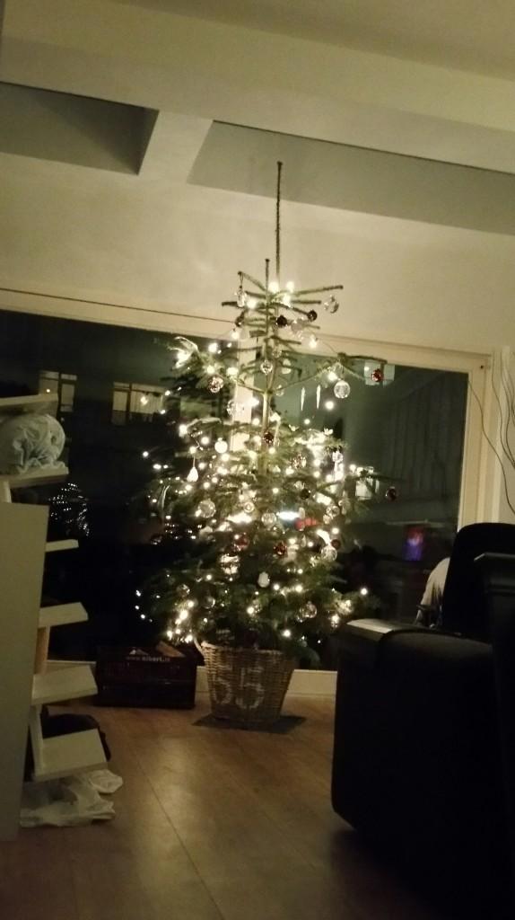 kerstboom-versieren-www-hobbyveld-1
