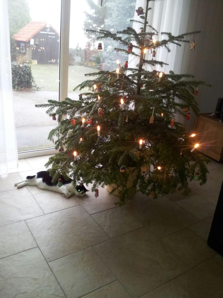 kerstboom-versieren-www-hobbyveld-10