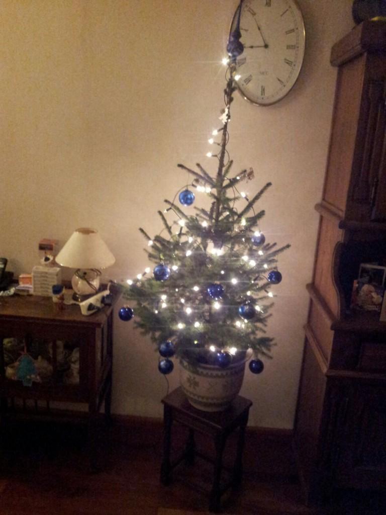 kerstboom-versieren-www-hobbyveld-12