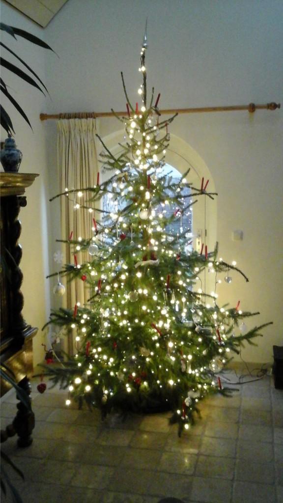 kerstboom-versieren-www-hobbyveld-5