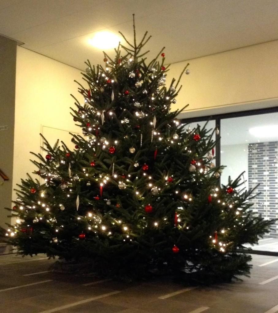 kerstboom-versieren-www-hobbyveld-6