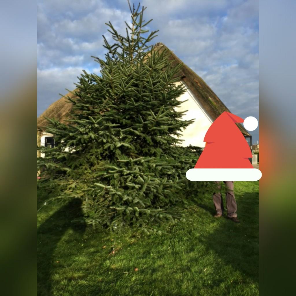 kerstboom-versieren-www-hobbyveld-8
